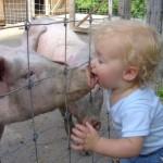 Un baiser cochon